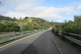 Džungľa na diaľnici