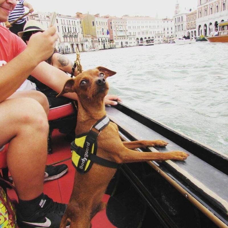 Benátky počas víkendovej pauzy